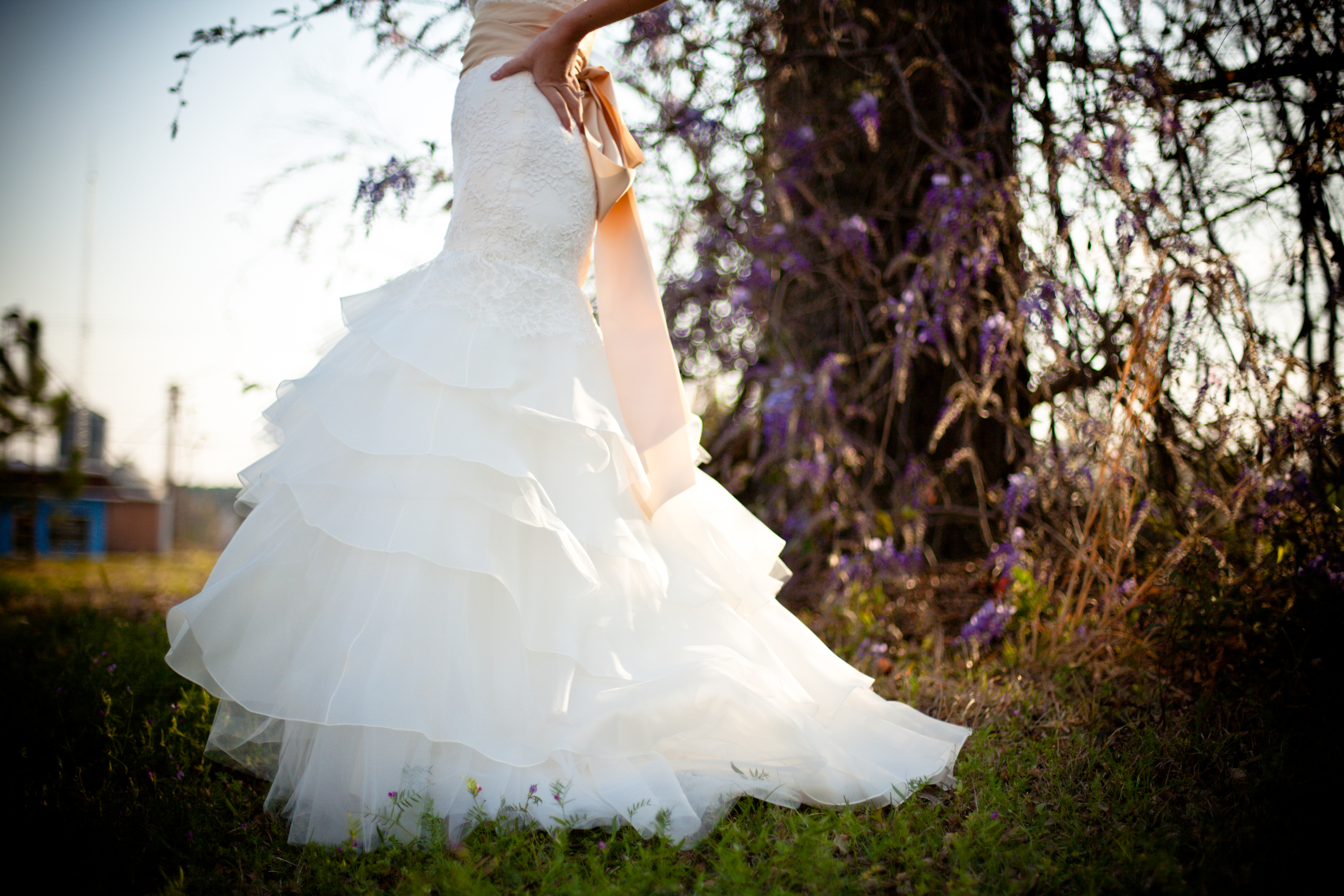 public-domain-images-free-stock-photos-wedding-dress-outdoors-green-grass-wisteria-vines
